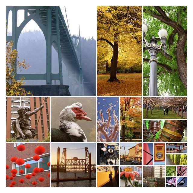 PhotoSection_Portland