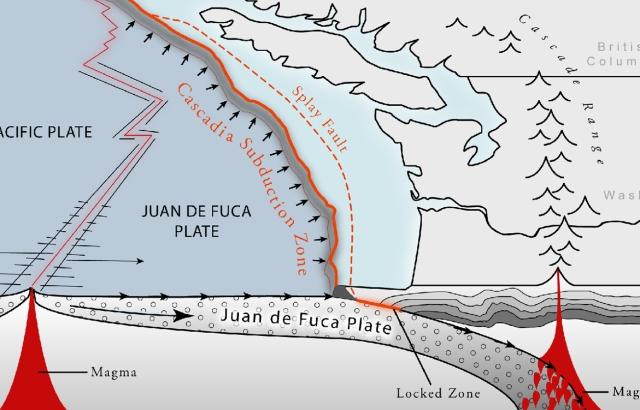 Tsunami_Figures